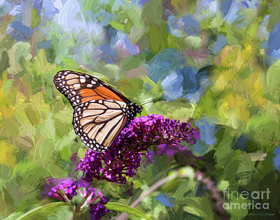 Photograph - Tip Toe Through The Garden by Barbara McMahon