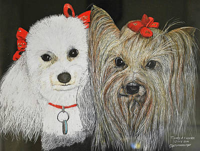 Yorkshire Terrier Watercolor Drawing - Tipper And Chelsea by E M Sutherland
