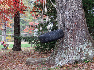 Photograph - Tire Swing by Aaron Martens