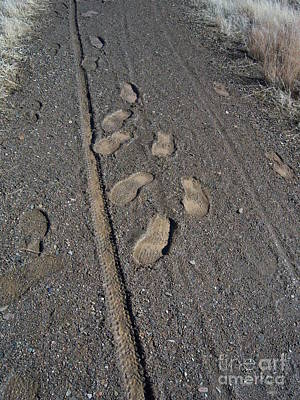 Tire Tracks And Foot Prints Art Print by Heather Kirk