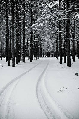 Photograph - Tire Tracks In Snow by Scott Sawyer