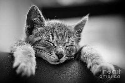 Tired .... So Tired Art Print by Alessandro Giorgi Art Photography