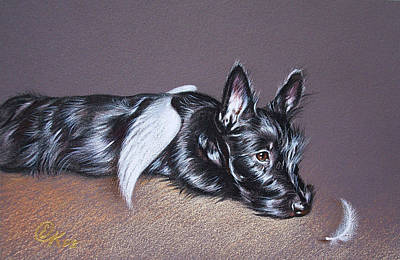 Scottish Dog Drawing - Tired Angel by Elena Kolotusha