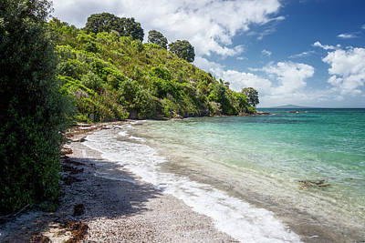 Auckland Photograph - Tiritiri Matangi New Zealand Shoreline II by Joan Carroll