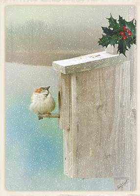 Photograph - Tis The Season by Fran J Scott