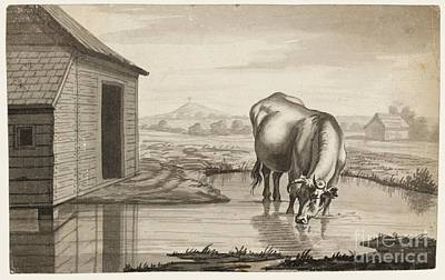 Title A Cow Standing In A Pool Beside  Print by MotionAge Designs