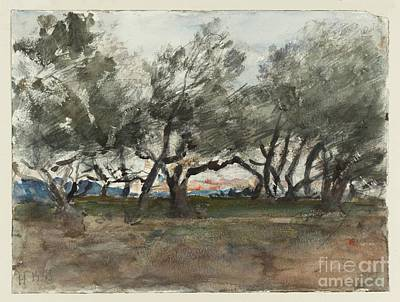 Corfu Painting - Title Olive Trees At Corfu by MotionAge Designs