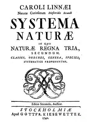 Book Title Photograph - Title Page, Systema Naturae, Carl by Science Source