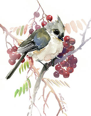 Titmouse Painting - Titmouse And Berries by Suren Nersisyan