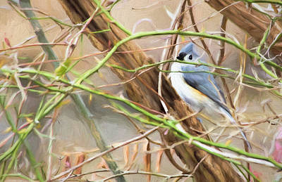Titmouse Digital Art - Titmouse In The Brambles by Francis Sullivan