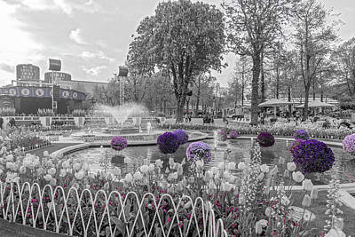 Afternoon Garden Photograph -  Tivoli Gardens Singled Out by Betsy Knapp