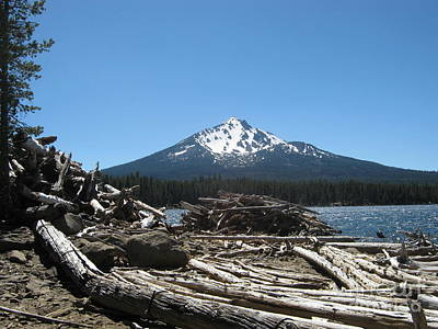 Photograph - To Build A Fire At Four Mile Lake by Marie Neder