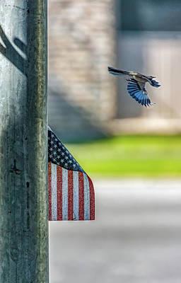 Photograph - To Kill A Mockingbird - An Update by Steve Harrington