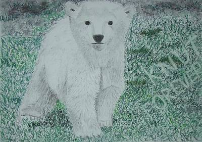 Wall Art - Drawing - to Knut with love by Cybele Chaves