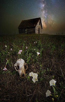 Photograph - To Live Is To Die by Aaron J Groen