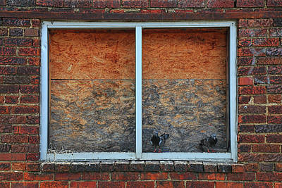 Photograph - Two Pigeons On A Window Sill by Carol Montoya