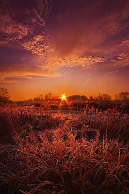 Photograph - To See And Feel Forever by Phil Koch