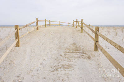 Photograph - To The Beach by Debra Fedchin
