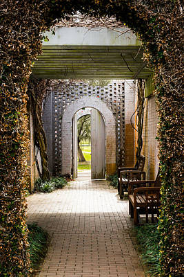 Photograph - To The Gardens by Joseph Tese