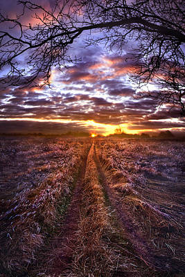 Photograph - To The Place I Belong by Phil Koch
