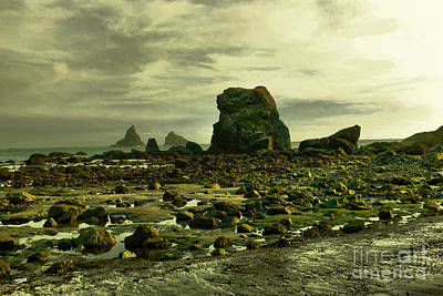 Photograph - To Walk Alone Along Rocky Shores by Jeff Swan