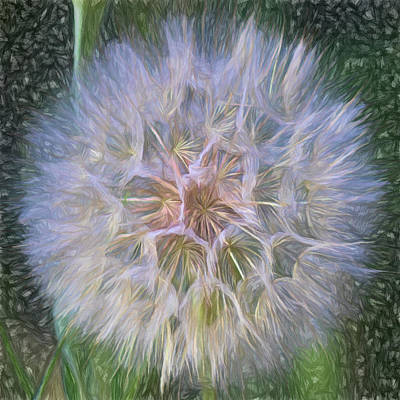 Digital Art - To Wish Upon A Breeze by Becky Titus