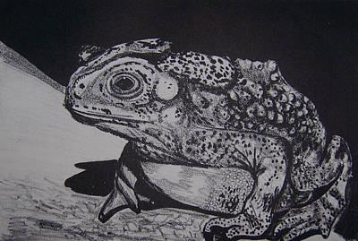 Toad Original by Jude Labuszewski