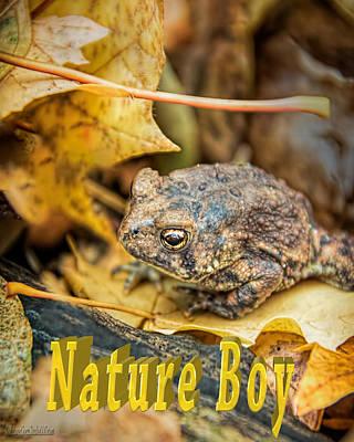 Photograph - Toad Nature Boy by LeeAnn McLaneGoetz McLaneGoetzStudioLLCcom