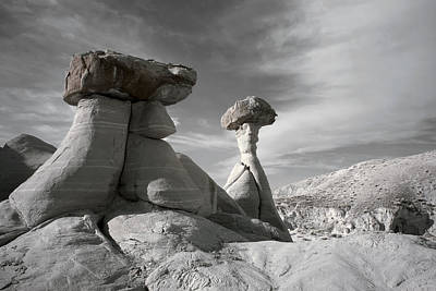 Photograph - Toadstool Hoodoos by Mike Irwin