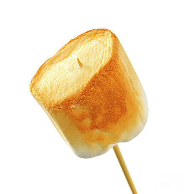 Photograph - Toasted Marshmallow by Elena Elisseeva