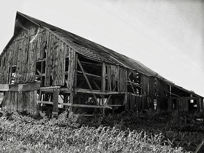 Photograph - Tobacco Barn 1 by Dustin Soph