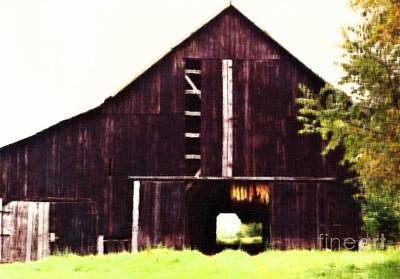 Photograph - Tobacco Barn by D Hackett