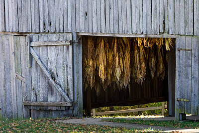 Photograph - Tobacco Drying Barn - Natchez Trace by Debra Martz