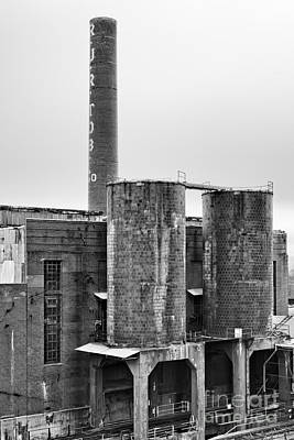 Photograph - Tobacco Power 4 by Patrick M Lynch