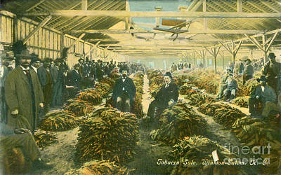 Photograph - Tobacco Sale by Dale Powell