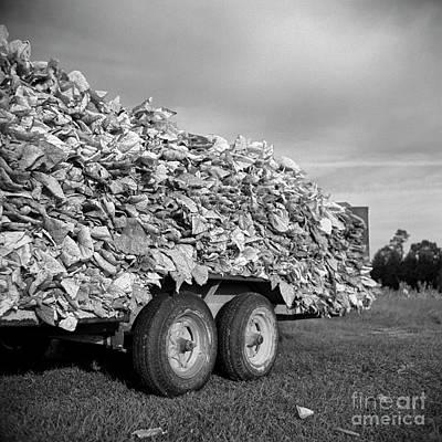 Photograph - Tobacco Wagon by Patrick M Lynch