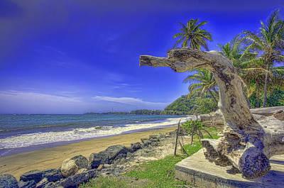 Photograph - Tobago Blues by Nadia Sanowar