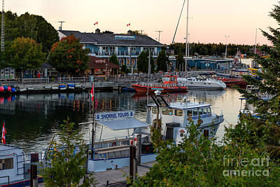 Photograph - Tobermory Harbour by Les Palenik