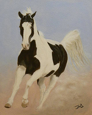 Pinto Painting - Tobi by Janice M Booth