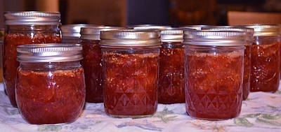 Photograph - Today It Was Fig Jam by rd Erickson