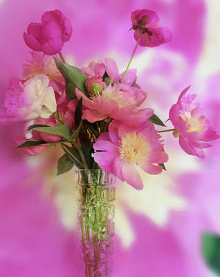 Photograph - Todays Peonies  by Jacklyn Duryea Fraizer