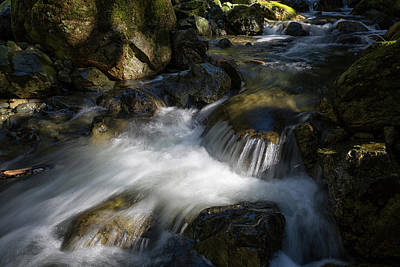 Photograph - Todd Creek 2 by Randy Hall