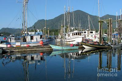 Photograph - Tofino Harbour by Frank Townsley