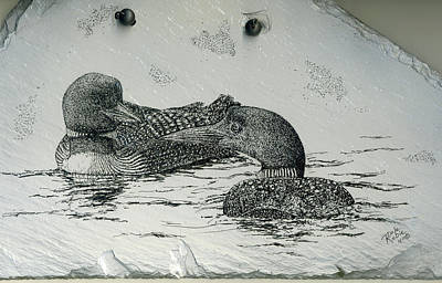 Loon Drawing - Together by Dale Robie