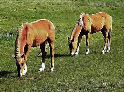 Photograph - Together Grazing by Dorothy Berry-Lound