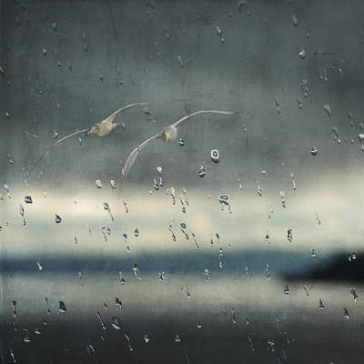 Photograph - Together In The Rain by Sally Banfill