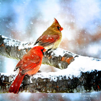Photograph - Together In The Snow by Nava Thompson