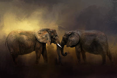 Elephant Photograph - Together Through The Storms by Jai Johnson