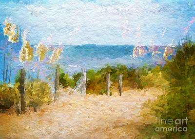 Sand Fences Mixed Media - Toi Toi Grasses On Path To Beach by Clive Littin