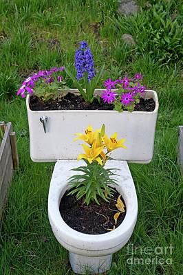 Photograph - Toilet Bowl Planter by John  Mitchell